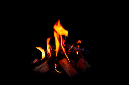 Fire and burning firewood in fireplace