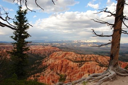 Bryce Canyon Banco de Imagens