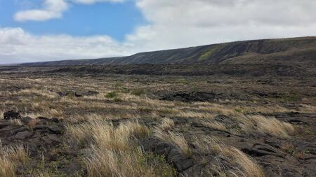Grassy plains in Hawaii's volcanic land.