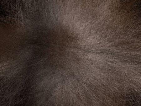 3D rendering Illustration of Human Head Hair  Stock Photo