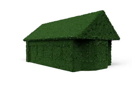 detached: 3D rendering detached house in lawn optics