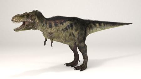 3D Computer rendering illustration of Tyrannosaurus