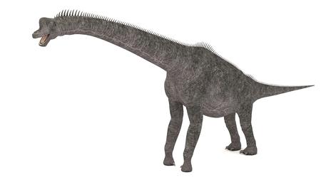 3D Computer rendering illustration of Brontotherium