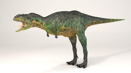 3D Computer rendering illustration of Aucasaurus Stock fotó