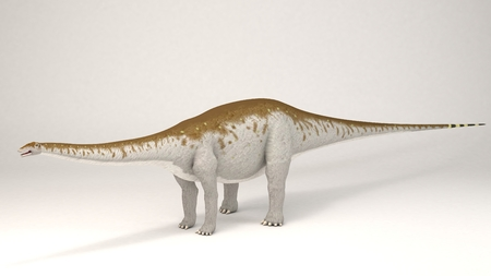 3D Computer rendering illustration of Apatosaurus