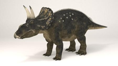 3D Computer rendering illustration of Diceratops