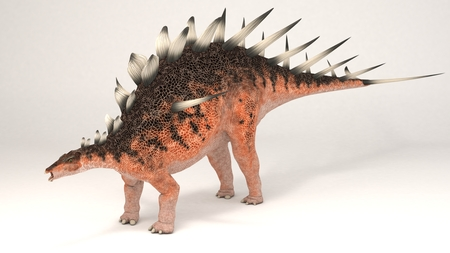 3D Computer rendering illustration of Kentrosaurus Stock fotó