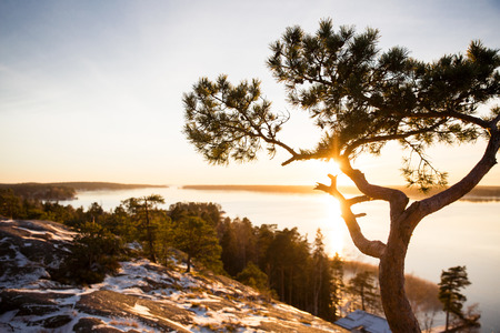 Finland, Helsinki, late autumn. Baltic sea, bay. Still water of the gulf, islands with forests. Low winter sun, dusk, pine trees on rock. Scenic peaceful Finnish landscape. Stock Photo