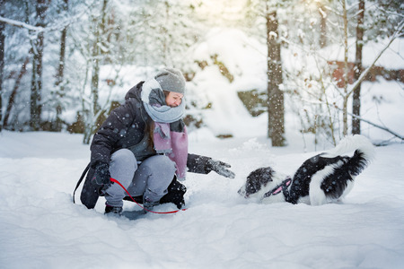 Woman playing with dog in snowy forest, enjoying the weather. Running and jumping happy pet, girl laughing, having fun. Beautiful winter landscape with trees in snow. Banco de Imagens - 114475935