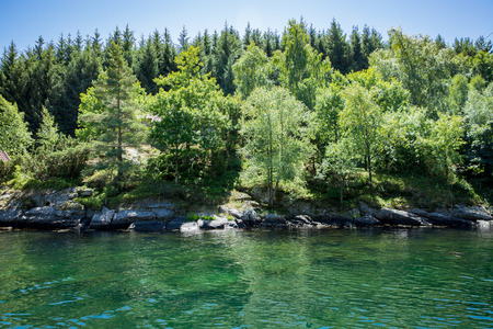 Serene scandinavian summer landscape of forest and fjord on south coast of Norway. Sunny day, emerald green quiet water.