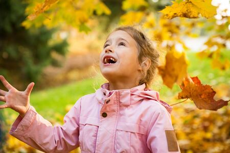 Cute little girl with missing teeth playing with yellow fallen leaves in autumn forest. Happy child laughing and smiling. Sunny autumn forest, sun beam.