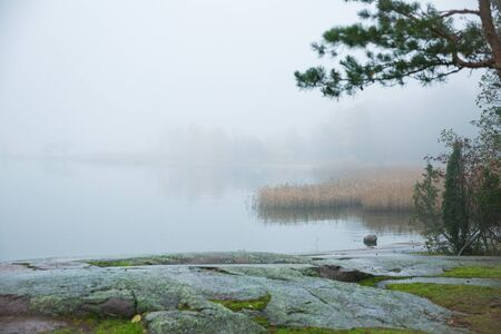 Serene Scandinavian fall landscape of Southern Finland, Espoo in foggy day. Colorful autumn forest reflecting in calm sea water. Fallen leaves on water surface and misty sea. 写真素材
