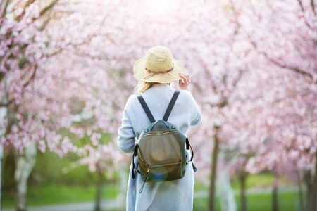 Beautiful woman in straw hat traveling in beautiful park with cherry trees in bloom, enjoying the nature in spring. Tourist with backpack. Rear view Imagens