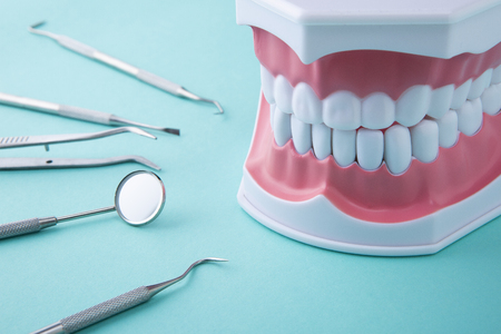 Teeth model and dental tools on green background