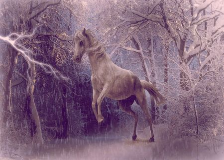 lightening: this is a digital image created by myself of a beautiful white horse rearing up against a bolt of lightening in a snowy white forrest