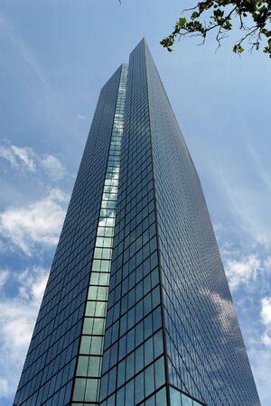 uomo alto: alto grattacielo fatto uomo incontra piccolo albero naturale, alto maestoso Back Bay Skyscraper