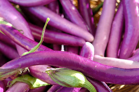 basket of purple eggplant at a famrers market in portland oregon