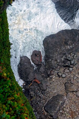 on a cliff high above the ocean, looking down a a single seal curled up on a rock among the rapid waves