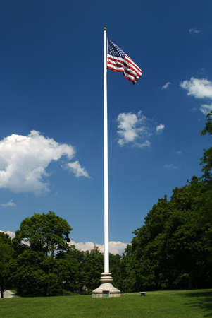 american flag blows in the wind at the top of a white flag pole against a rich blue sky surrounded by trees and grass Imagens