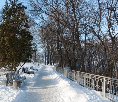 A park. Winter. Snow. Sunny morning.