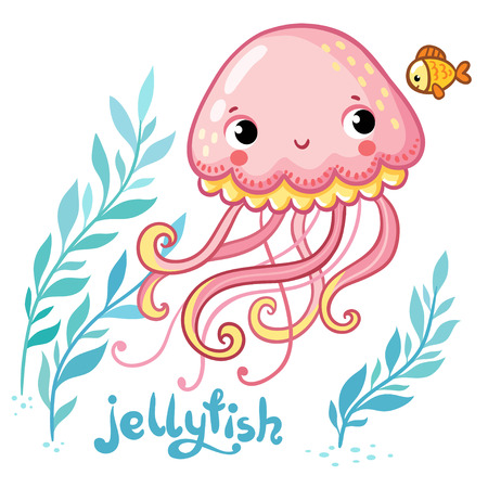zoo cartoon: Jellyfish. Cute cartoon Jellyfish in vector. Vector illustration of jellyfish and seaweed Illustration