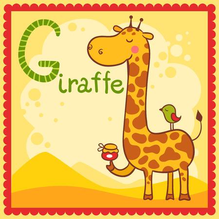 g giraffe: Illustrated alphabet letter G and giraffe. Animals.