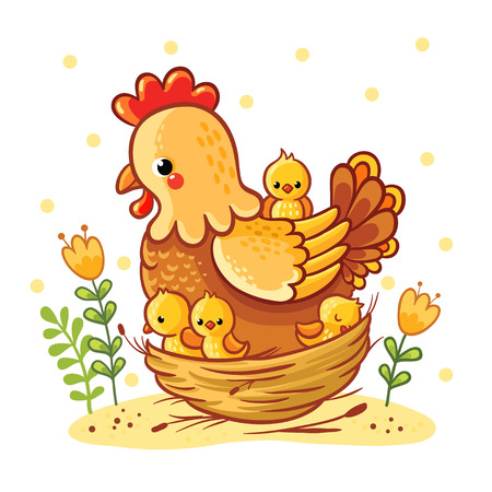 chicken family: Cartoon hen and chickens isolated on background. Farm. Chicken family. Hen and chickens vector isolated