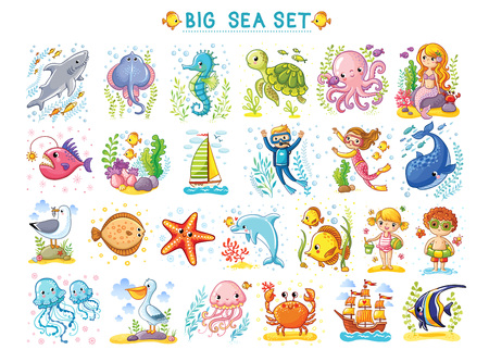 Big Marine set of vector illustration on the marine theme. Collection of sea animals in cartoon style. Tropical summer pictures. Sea life illustration. Vectores