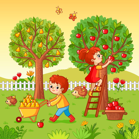 Boy and girl collect fruit harvest. Vector illustration with children that collect apples and pears in a cartoon style.