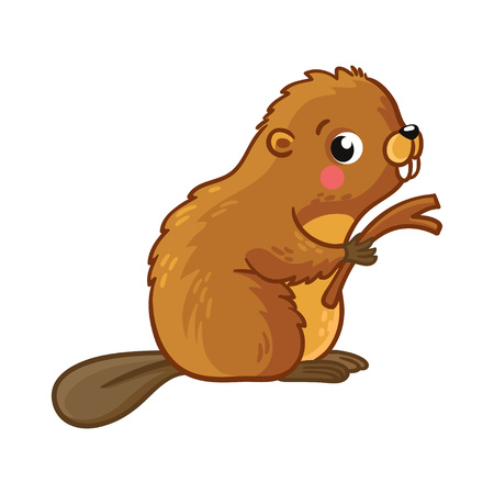 Cute young beaver is sitting and holding stick. Vector illustration with an animal in cartoon style.
