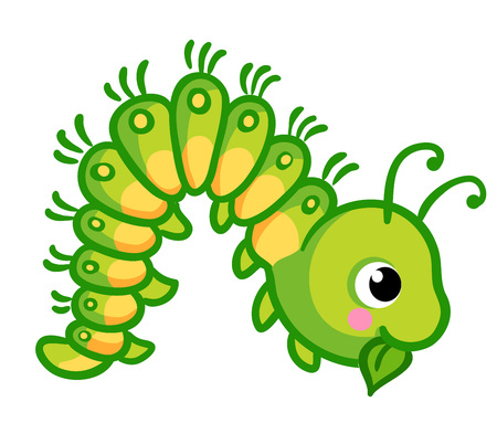 Vector illustration of a caterpillar that eats a green leaf. Insect in cartoon style on a white background. Illustration
