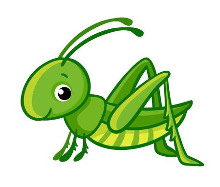 Vector geïsoleerde schattige groene sprinkhaan op een witte achtergrond. Stockfoto - 88178466