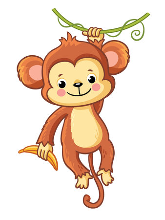 The monkey hangs on a branch and holds a banana in his hand. Cute animal on a white background. Vector illustration in childrens cartoon style.