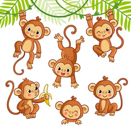 Vector set with monkey in different poses. Vector animal collection in cartoon style. Illustration