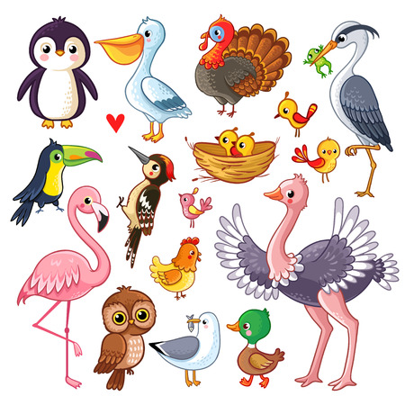 Set with birds. Vector illustration with animals in children's style.