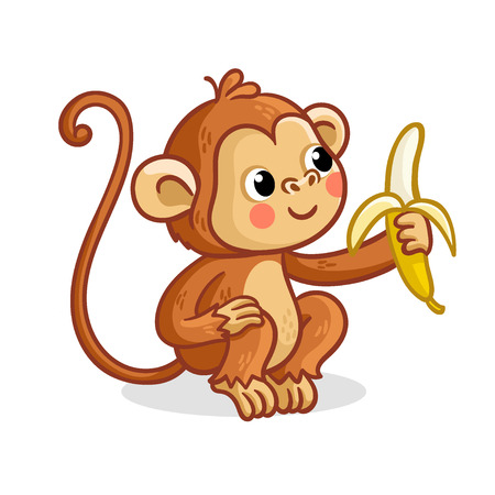 The monkey on a white background eats a banana. Vector illustration with a cute animal from Africa. Stock Illustratie
