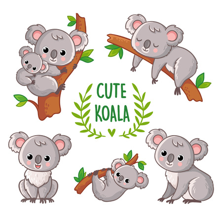 Vector illustration with koala in various poses. Collection of vector illustrations with a cute animal in cartoon style.