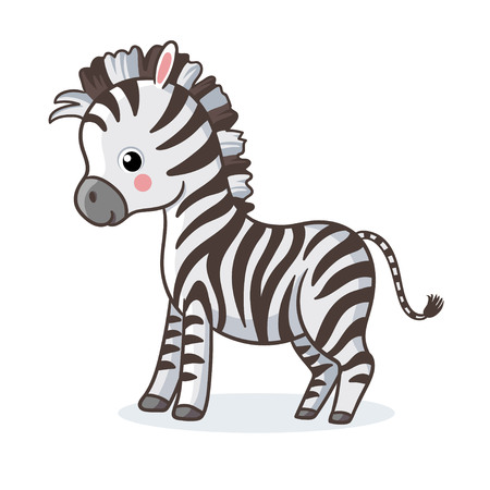 Zebra is standing on a white background and smiling. Vector illustration with cute african animal in cartoon style. Illustration