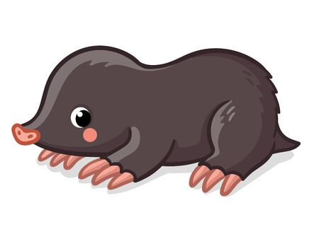 Little cute mole on white background. Vector illustration with animal in cartoon style. Stock Illustratie