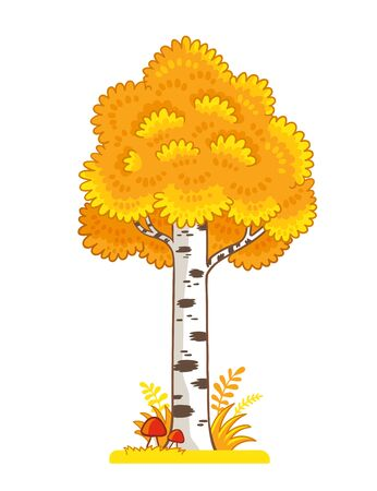 Single yellow birch stands in a clearing with mushrooms on a white background. Vector illustration with tree on autumn theme in cartoon style.