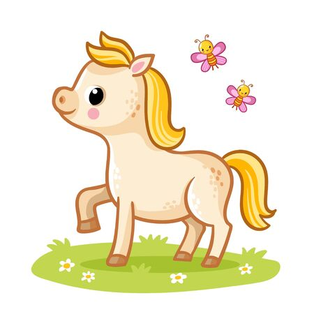 Little cute foal with a golden mane standing in the meadow with butterflies. Vecton illustration with a horse in cartoon style.