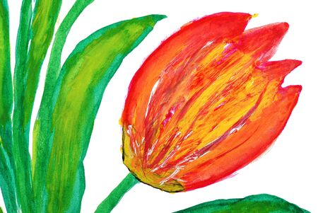 Flowers drawn by water color paints Stock Photo - 10641895