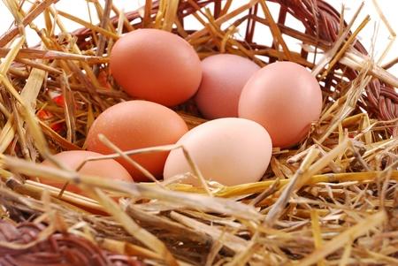 Brown eggs at hay in basket. photo