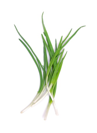 bulb and stem vegetables: Green onions isolated on white.