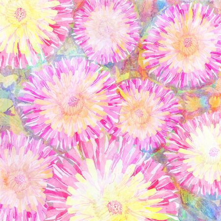 Hand drawn water color pink peonies background. Imagens - 40033568