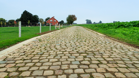 Small empty cobblestone street in a rural agricultural scene in Flanders, Belgium