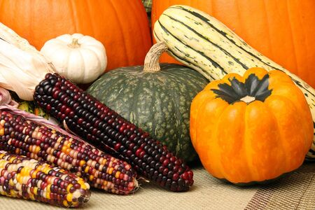 Autumn scene with pumpkins, corn, and colorful orange and green squash