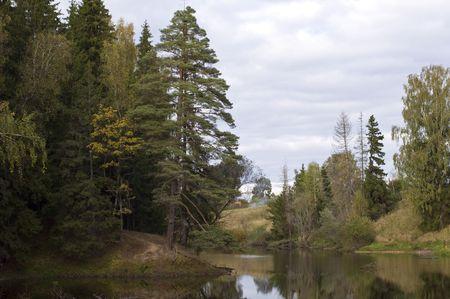Forest lake, wild landscape Stock Photo - 5691743