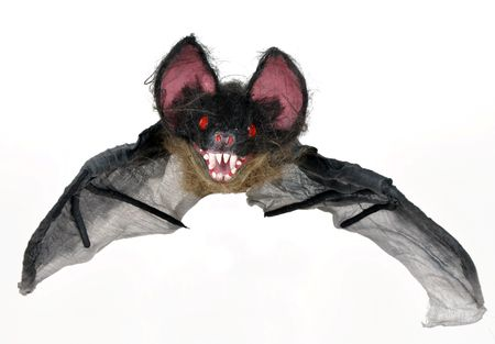 Halloween bat flying on a white background