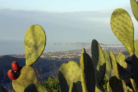 Bellissimo paesaggio della Sicilia con fico d'India in cima Archivio Fotografico - 13917755